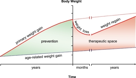 history of obesity Although a majority of americans still believe that personal choices about eating and exercise underlie the obesity epidemic, for more than a century, physicians have.
