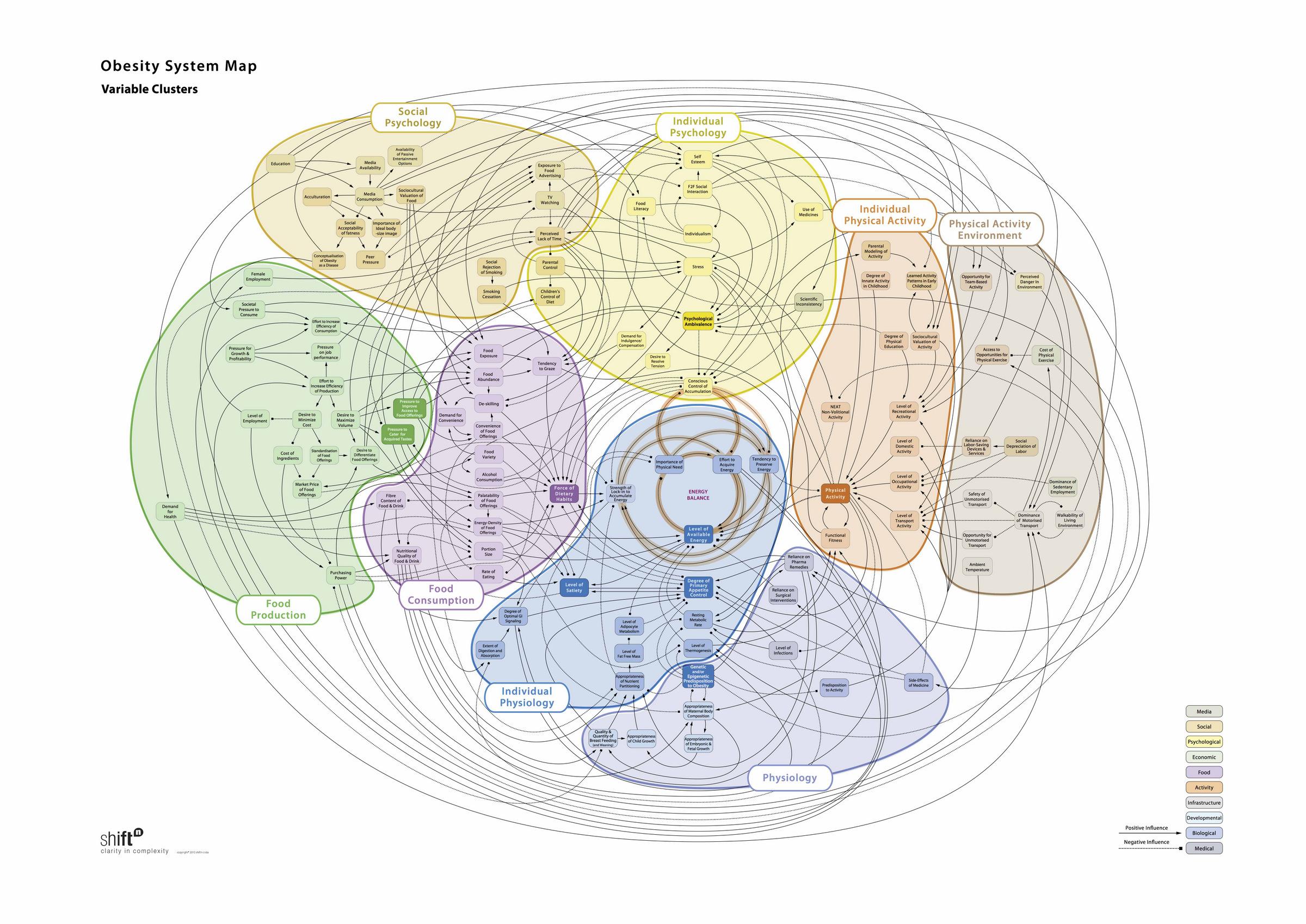 Obesity System Map