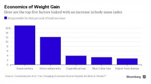 Bloomberg: Economics of Weight Gain