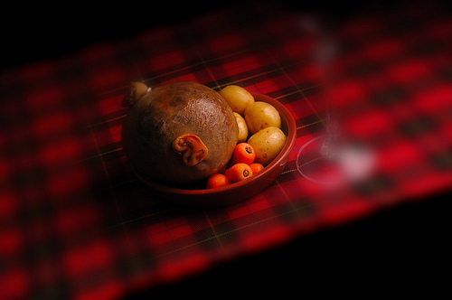 Probably the Best Picture of a Haggis Ever