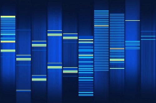 ConscienHealth DNA