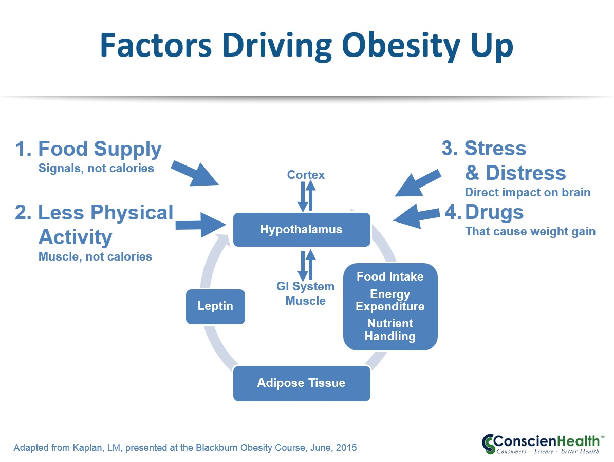 Factors Driving Obesity Up
