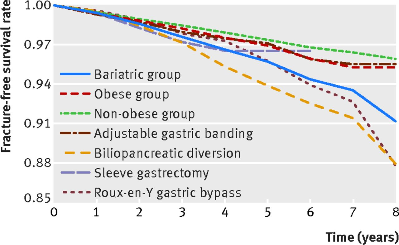 Fracture Free Survival Rate