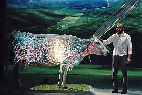 Dell's Magic Connected Dairy Cow
