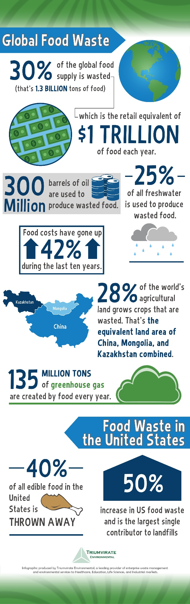 Global Food Waste Infographic