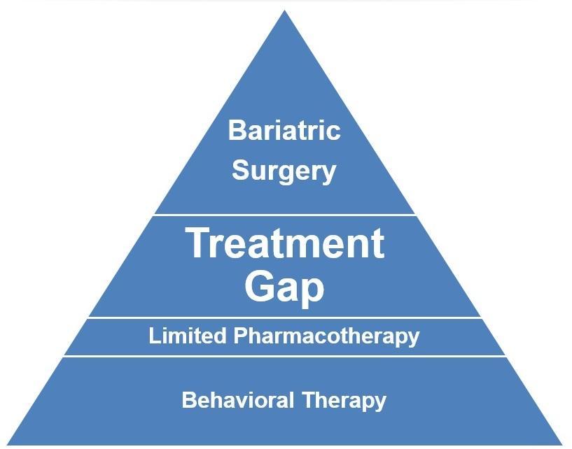 Treatment Gap Pyramid