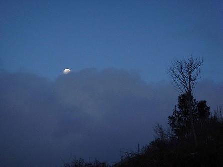 The Elusive Moon