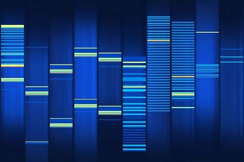 ConscienHealth DNA