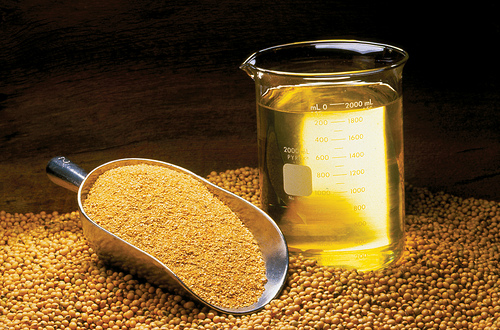 Soybean Oil, Meal, and Beans