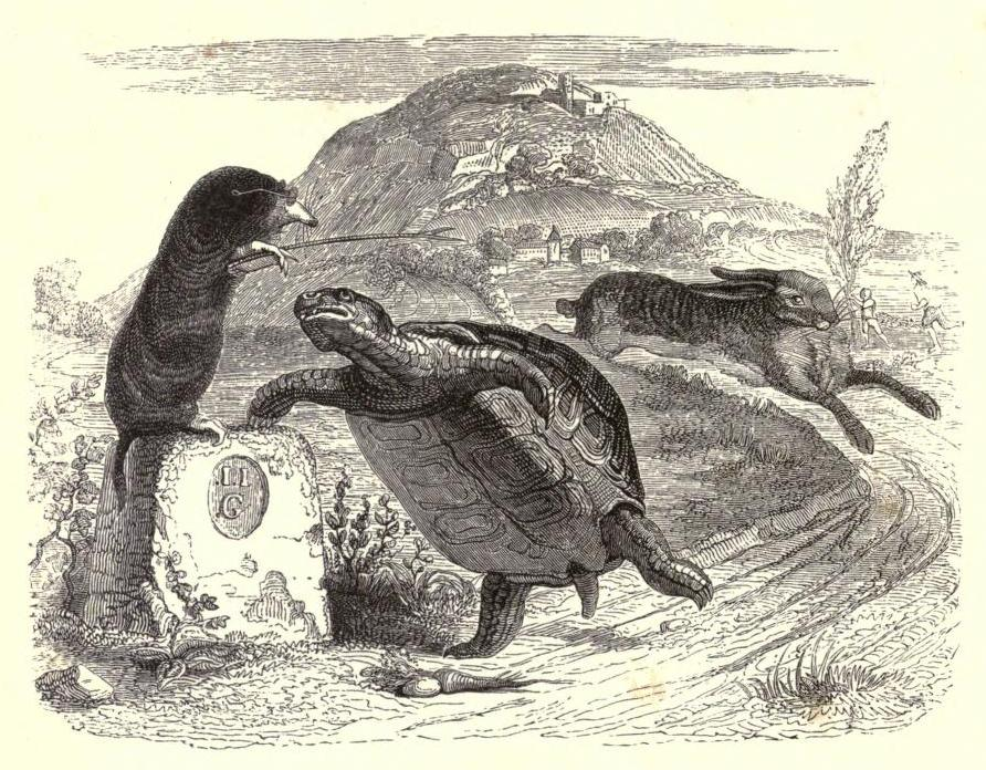 Tortoise and the Hare, Illustration by Jean Grandville