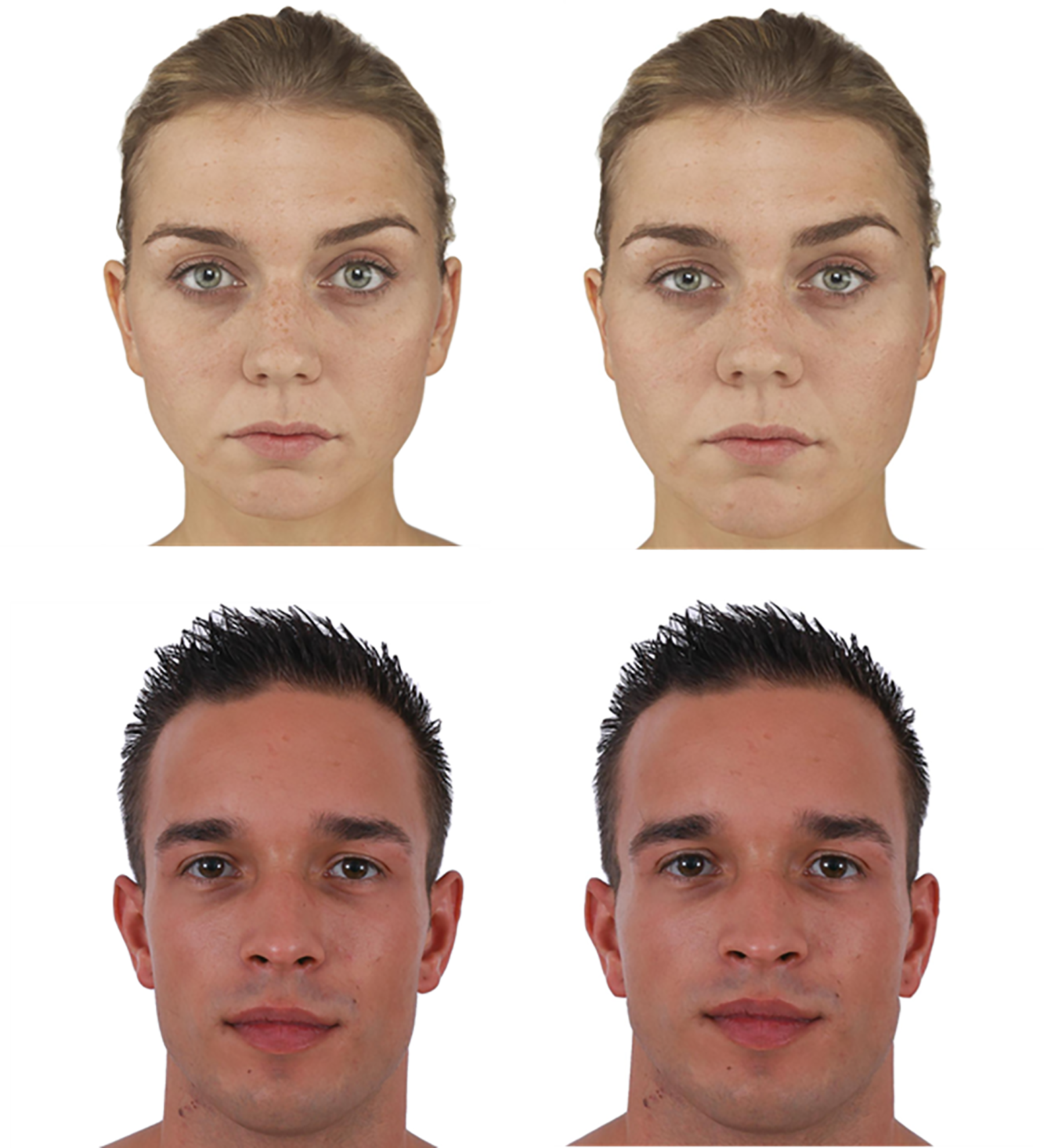 Nickson et al. Test Faces