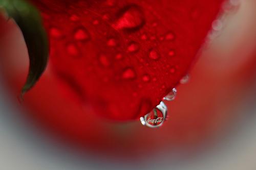 Reflection on Coca-Cola
