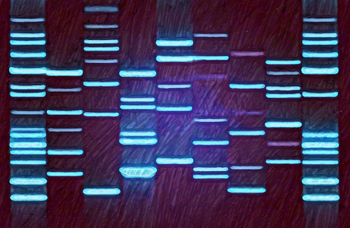 Purple Blue DNA on Canvas