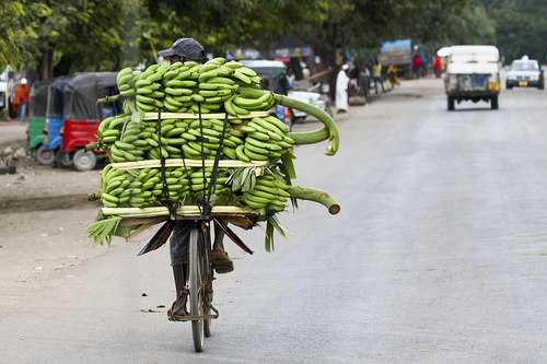 Fruit Transport, Africa