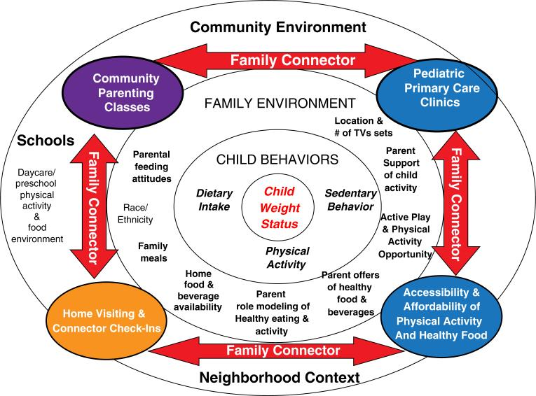 Social Ecological Model for Obesity Prevention