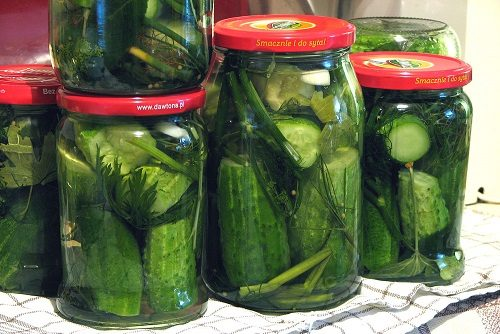 Pickling Cucumbers at Home
