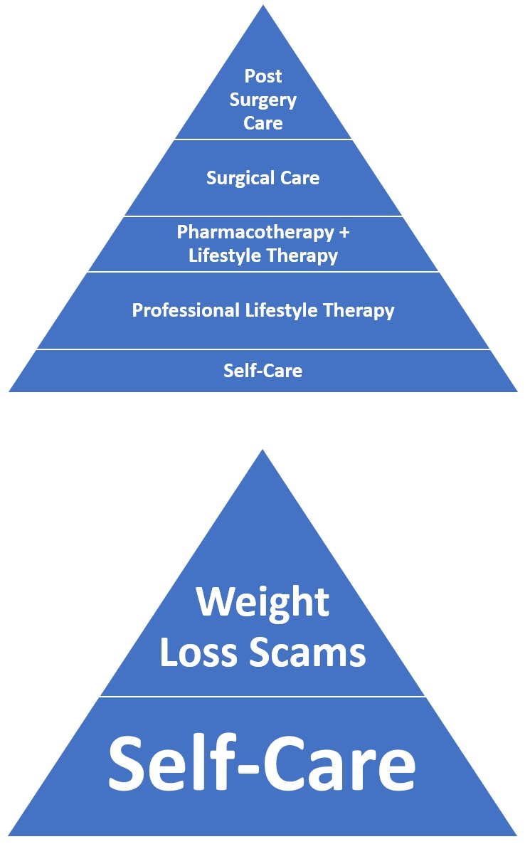 Obesity Care Options