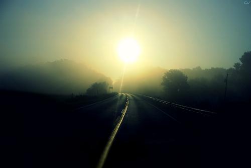 Long Foggy Road