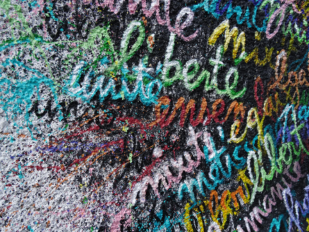 Words & Wall