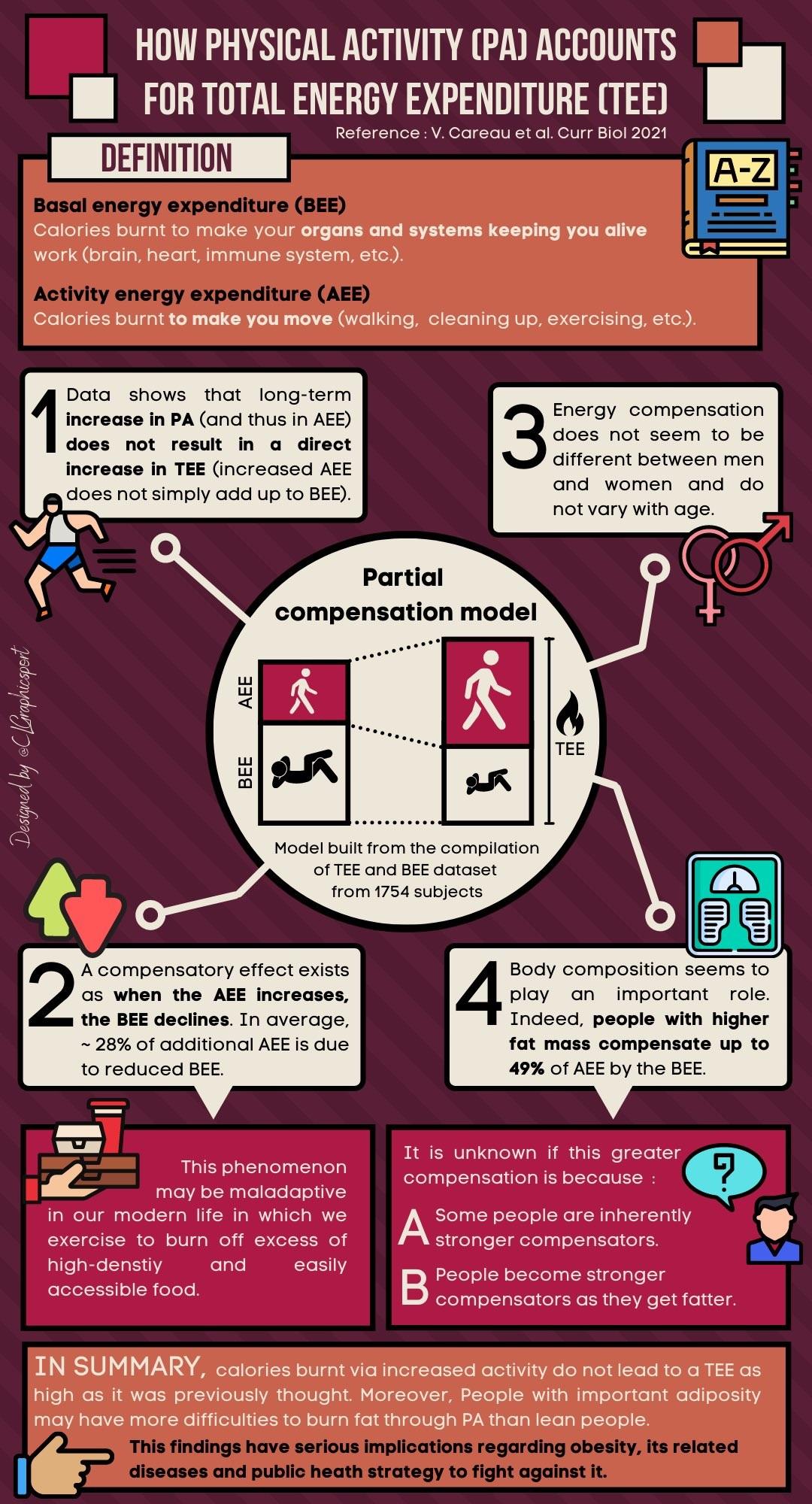 Careau Infographic